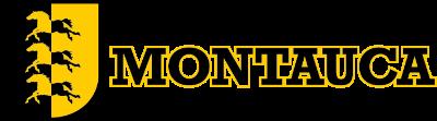 Club Juvenil Montauca Logo
